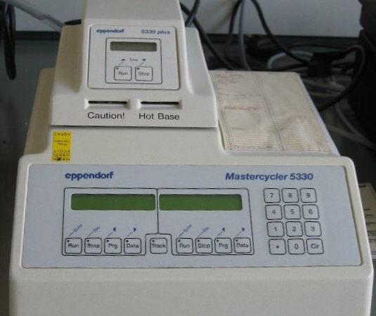 Komplementäre Labordiagnostik